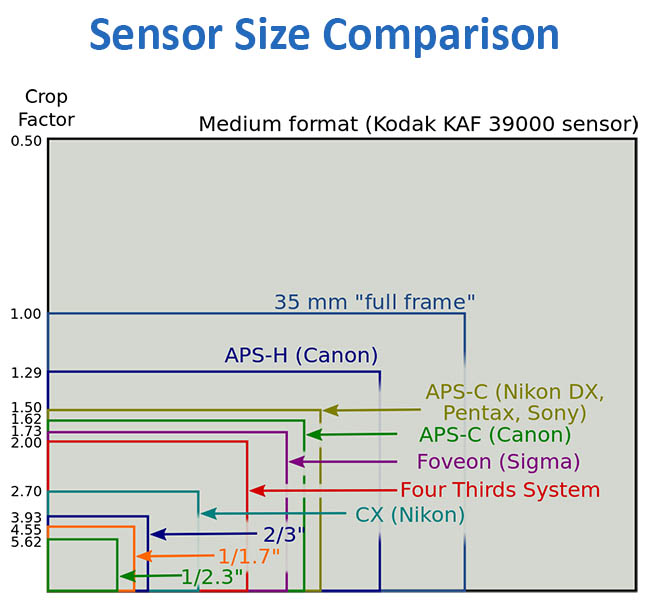 Sensor size comparison - Beast